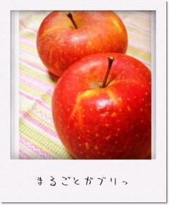 ファイル00350001.jpg